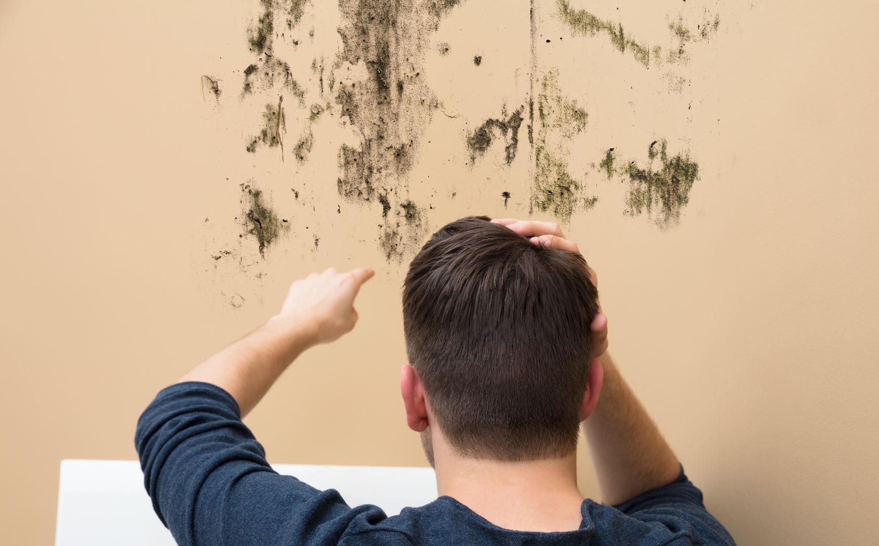 Xử lý vết bẩn trên tường