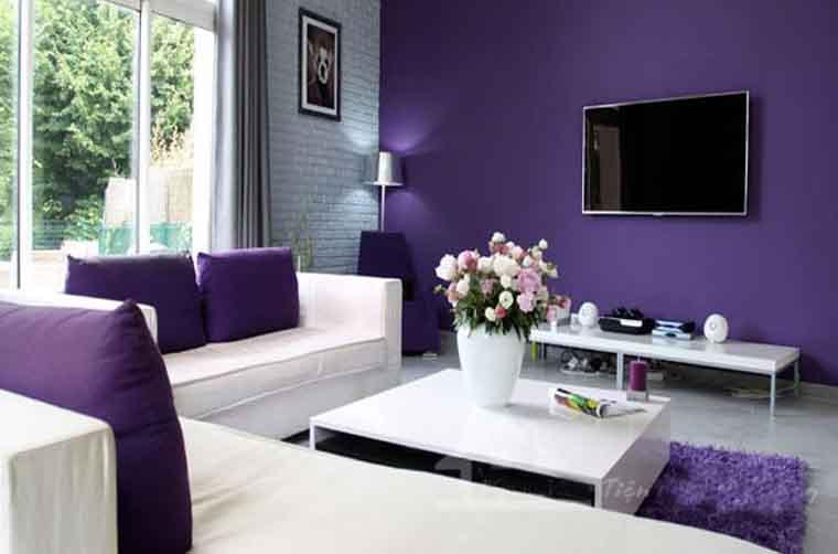 sơn nội thất màu tím